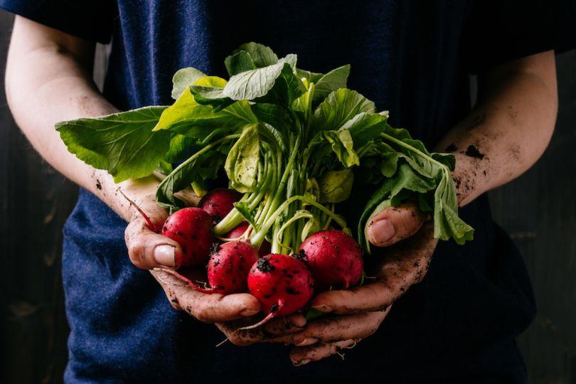 FoodMaven food tech startup Colorado